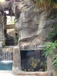 Biosphere Pool Fish Tank