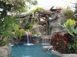 Biosphere pool at Grand Cascades Lodge