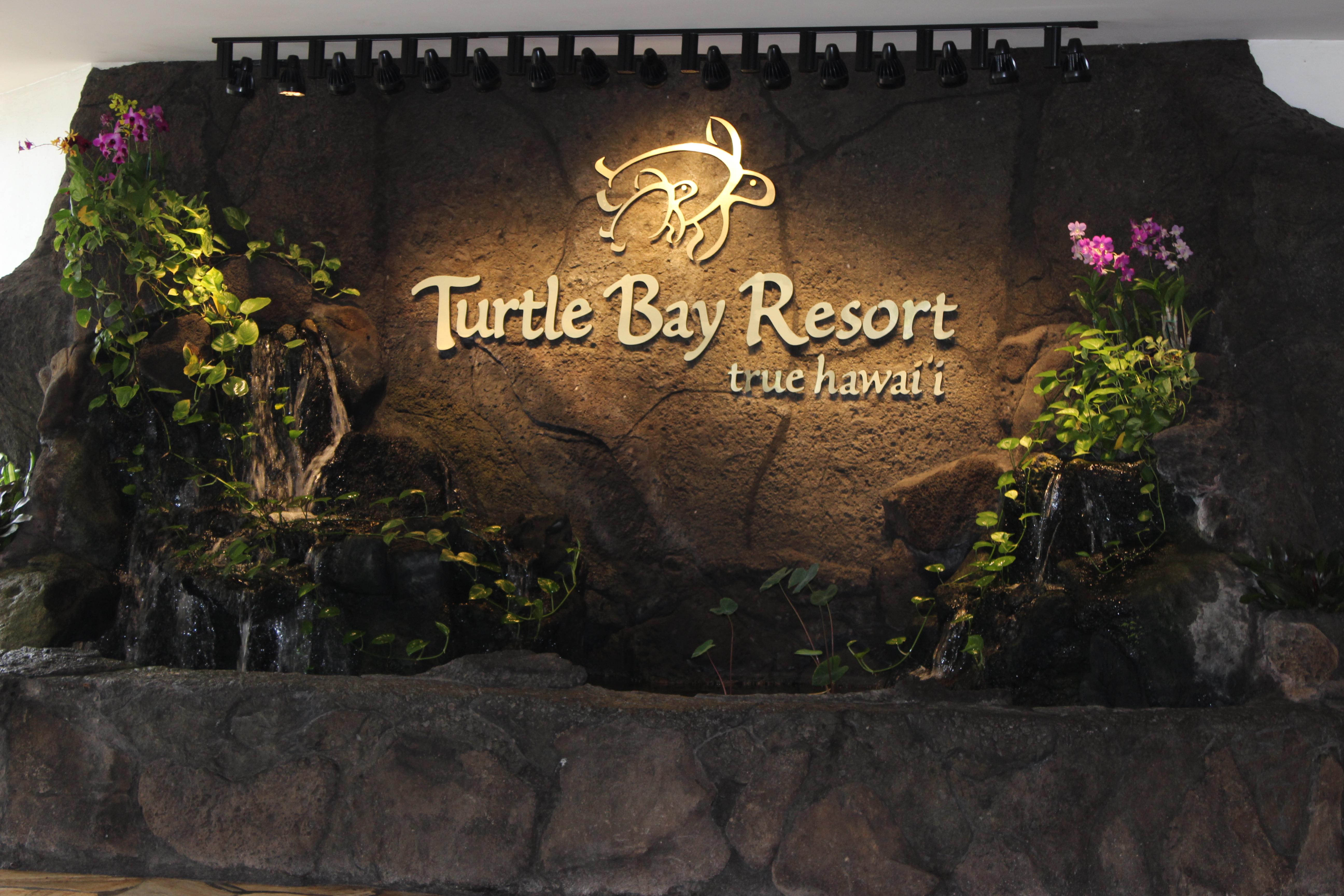 Turtle Bay Beach Resort Review