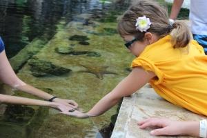 Oahu's Sea Life Park