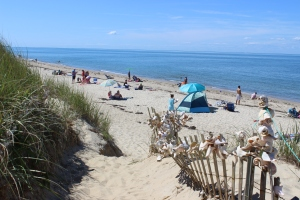 Nantucket Dionis Beach