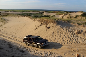 Arts Dune Tours Cape Cod